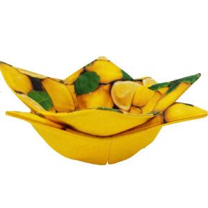 Microwave Cozy Lemons